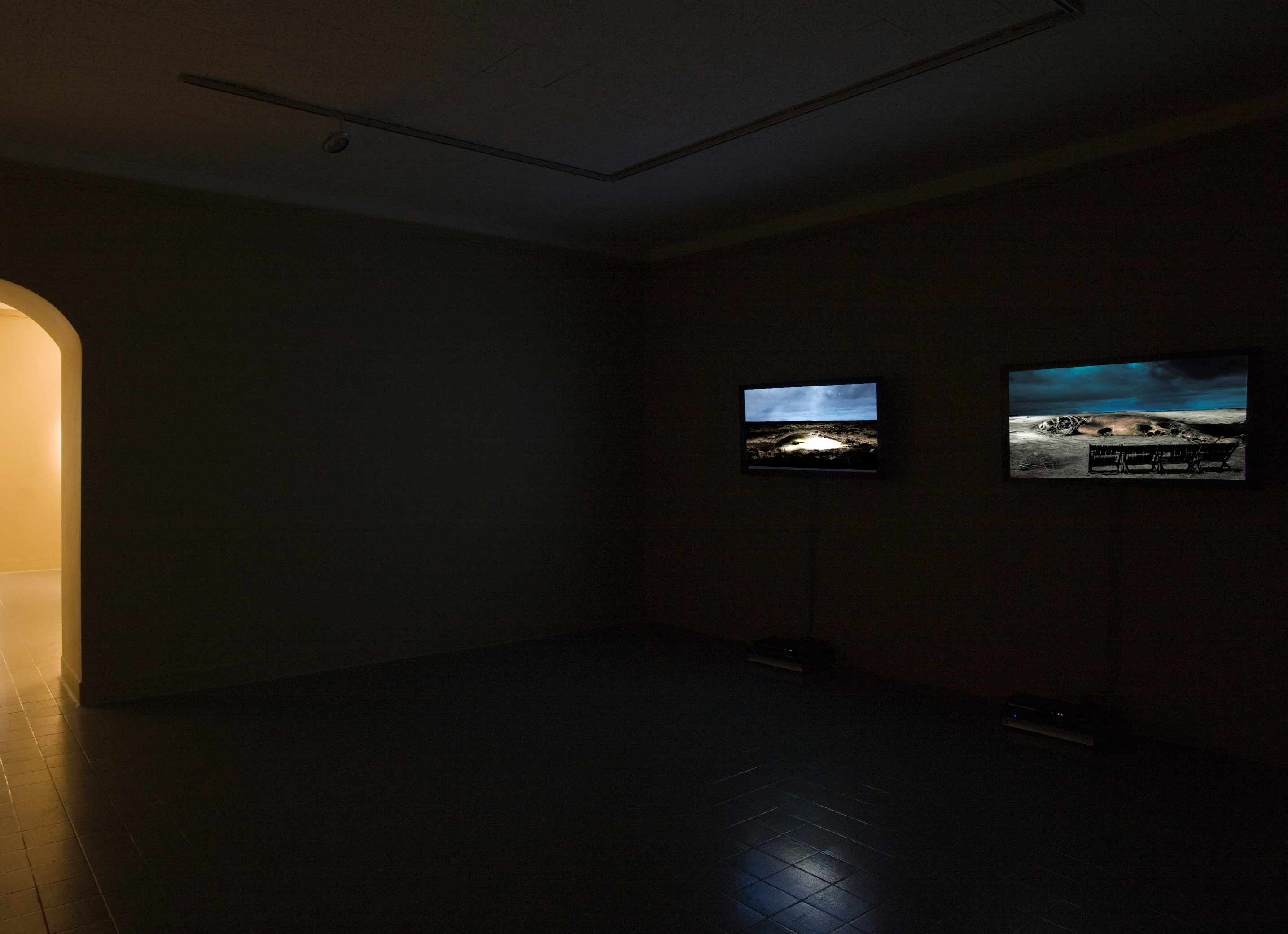 The Butler Gallery, Kilkenny, 2008 (solo show). Curated by Anna O'Sullivan. Photo: Denis Mortell.