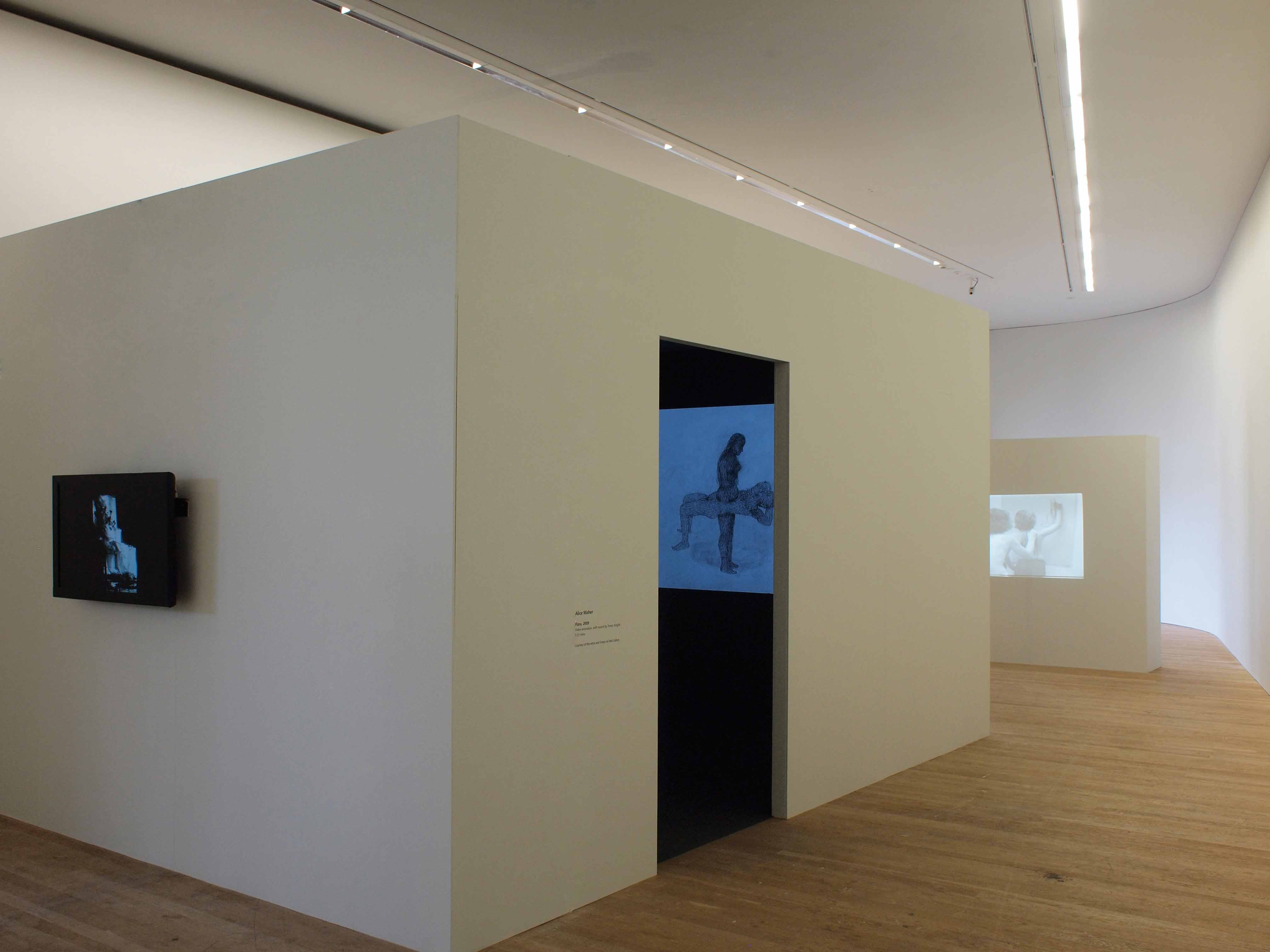 Motion Capture, Lewis Glucksman Gallery, Cork, Ireland, 2012. Curated by Ed Krcma & Matt Packer.