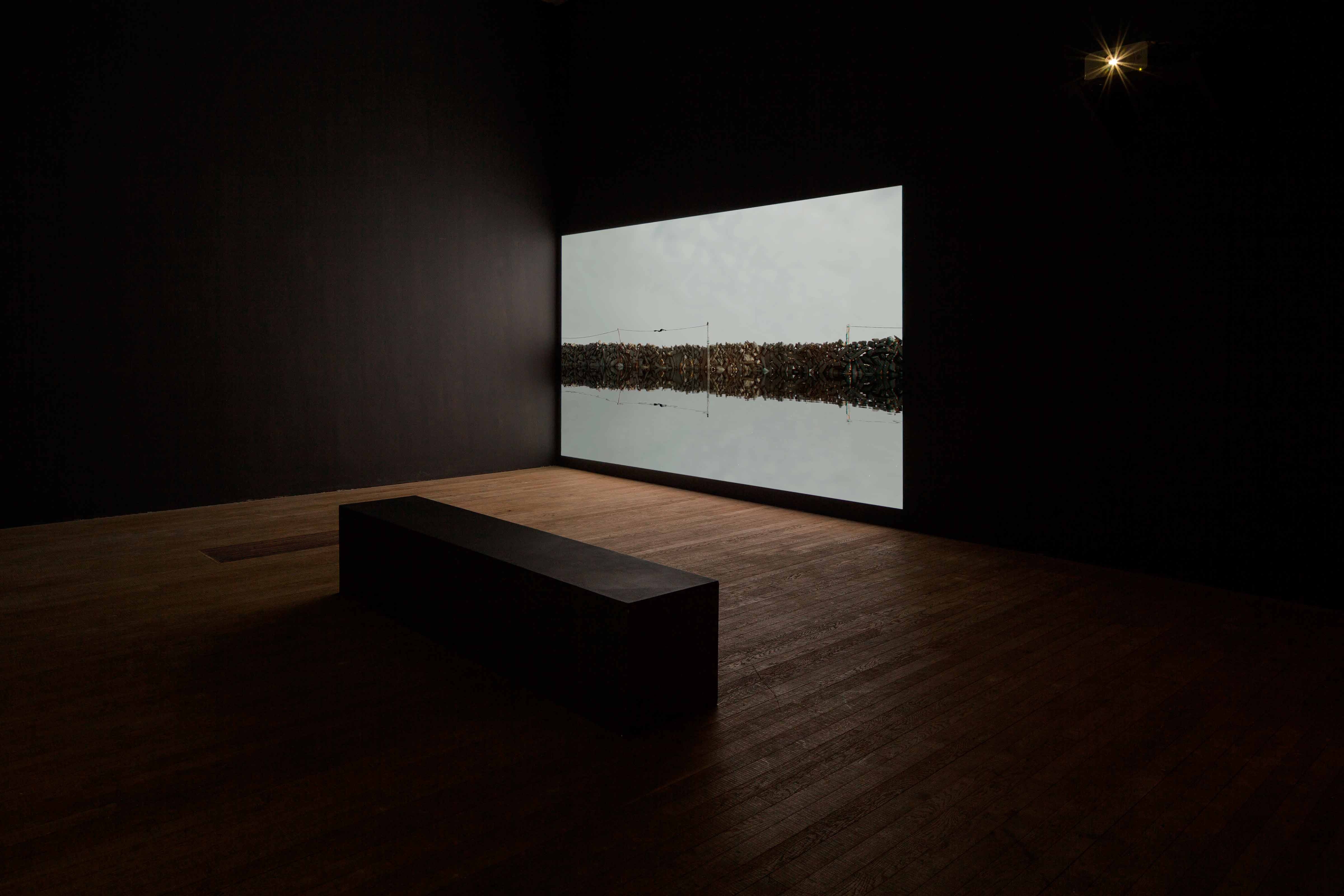 2116 - Forecast of the next century, Lewis Glucksman Gallery, Cork, 2016. Curated by Fiona Kearney, Chris Clarke & Caitlin Doherty.