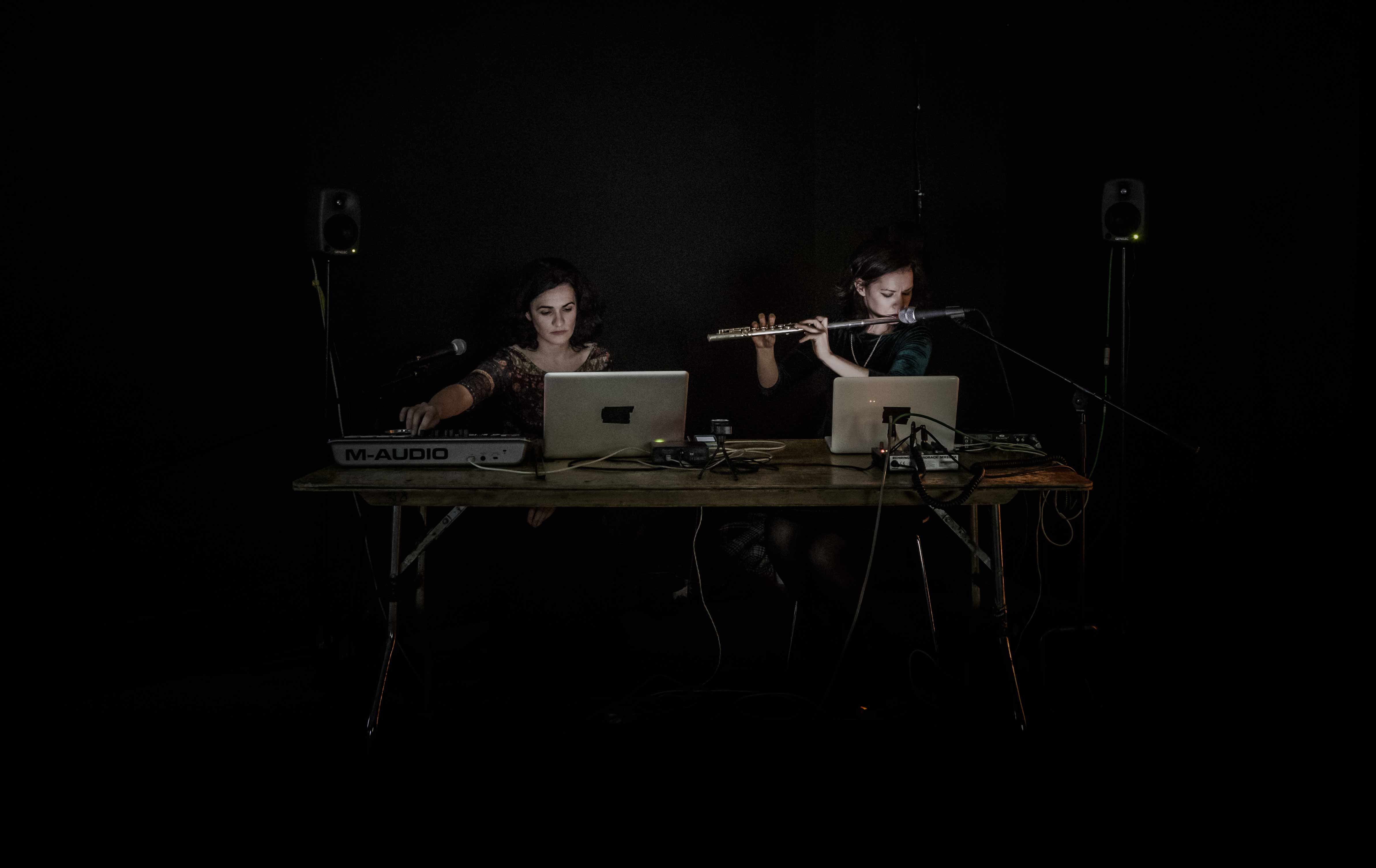 Reports to an Academy: Live electronic performance by Linda & Irene Buckley, RHA, Dublin, 2015. Photo: Mike Hannon.
