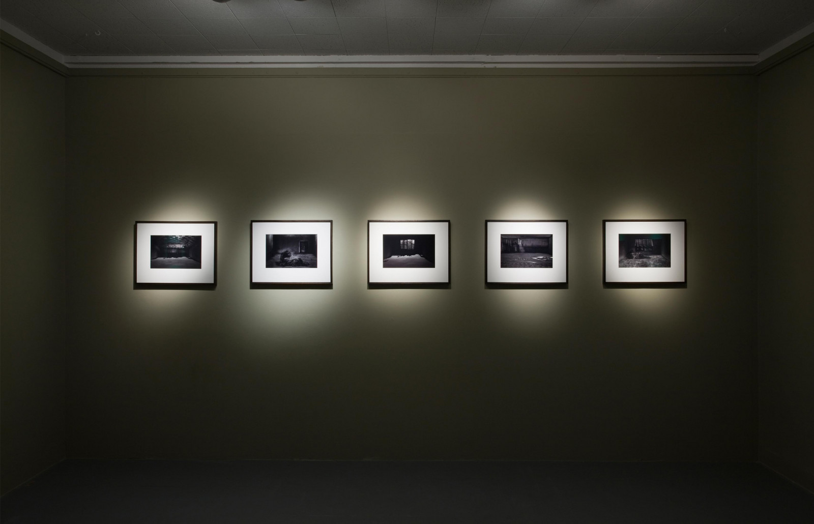 The Butler Gallery, Kilkenny, Ireland, 2008 (solo show). Curated by Anna O'Sullivan. Photo: Denis Mortell.