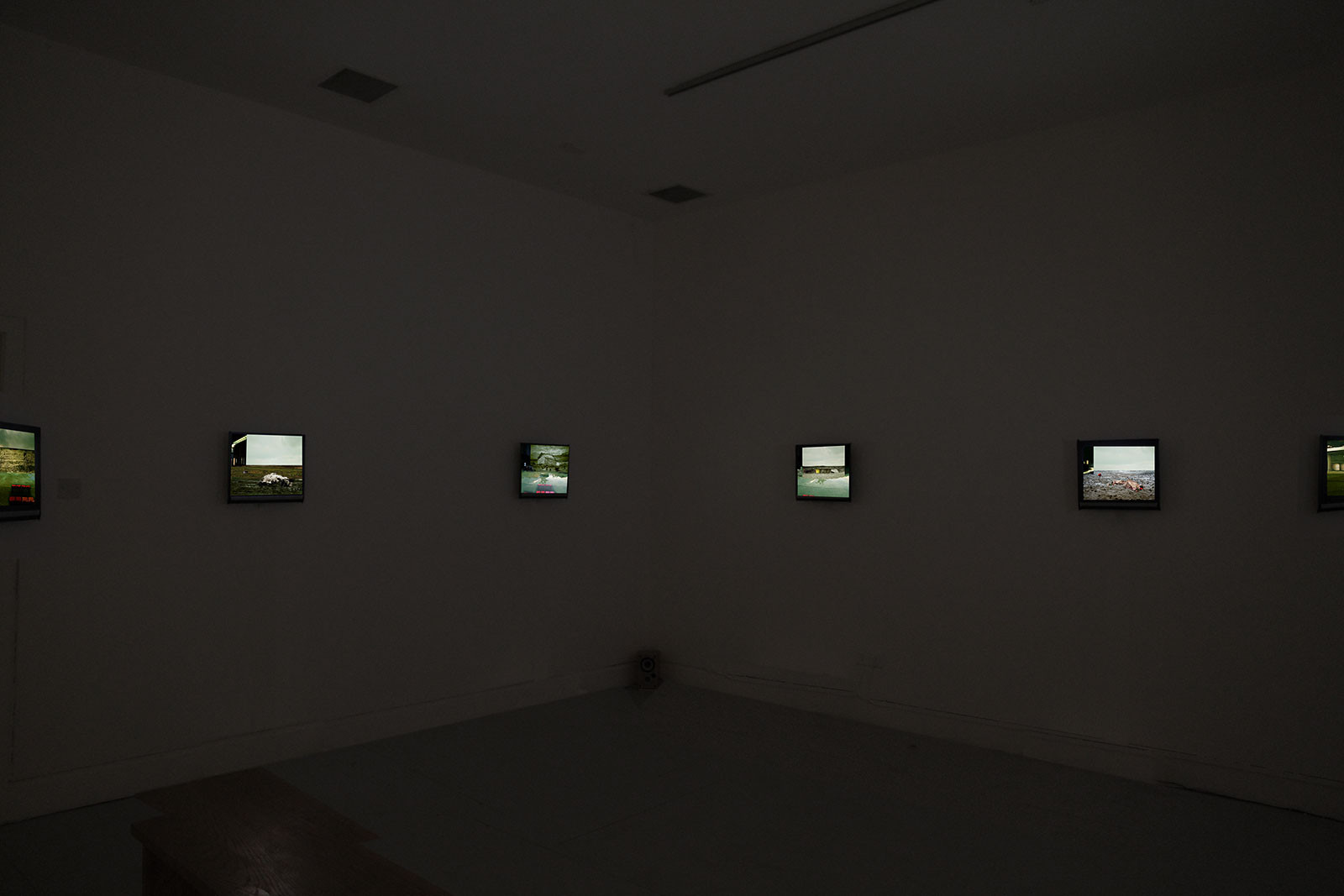 Exhibition view, Galway Arts Centre, 2010 (solo show).